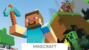 Especial Minecraft