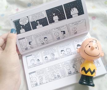 Coleção de livros e toys do peanuts