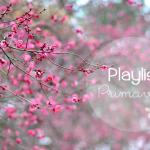 Playlist-ColorindoNuvens
