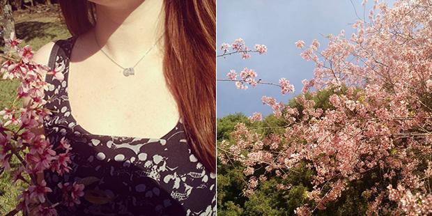 instagram-agosto-colorindonuvens