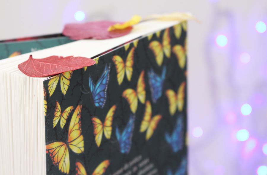 Resenha de Livro O Canto mais escuro da floresta Holly Black