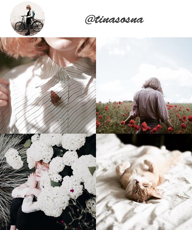 Perfis Instagram Inspiradores Gringos para seguir @tinasosna