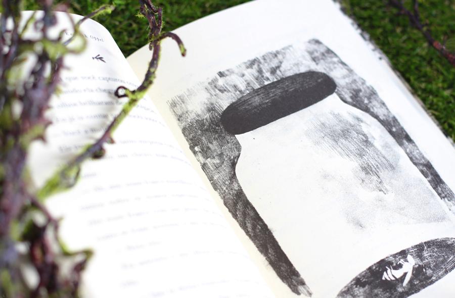 Resenha de Livro O Vesperio Galera Record
