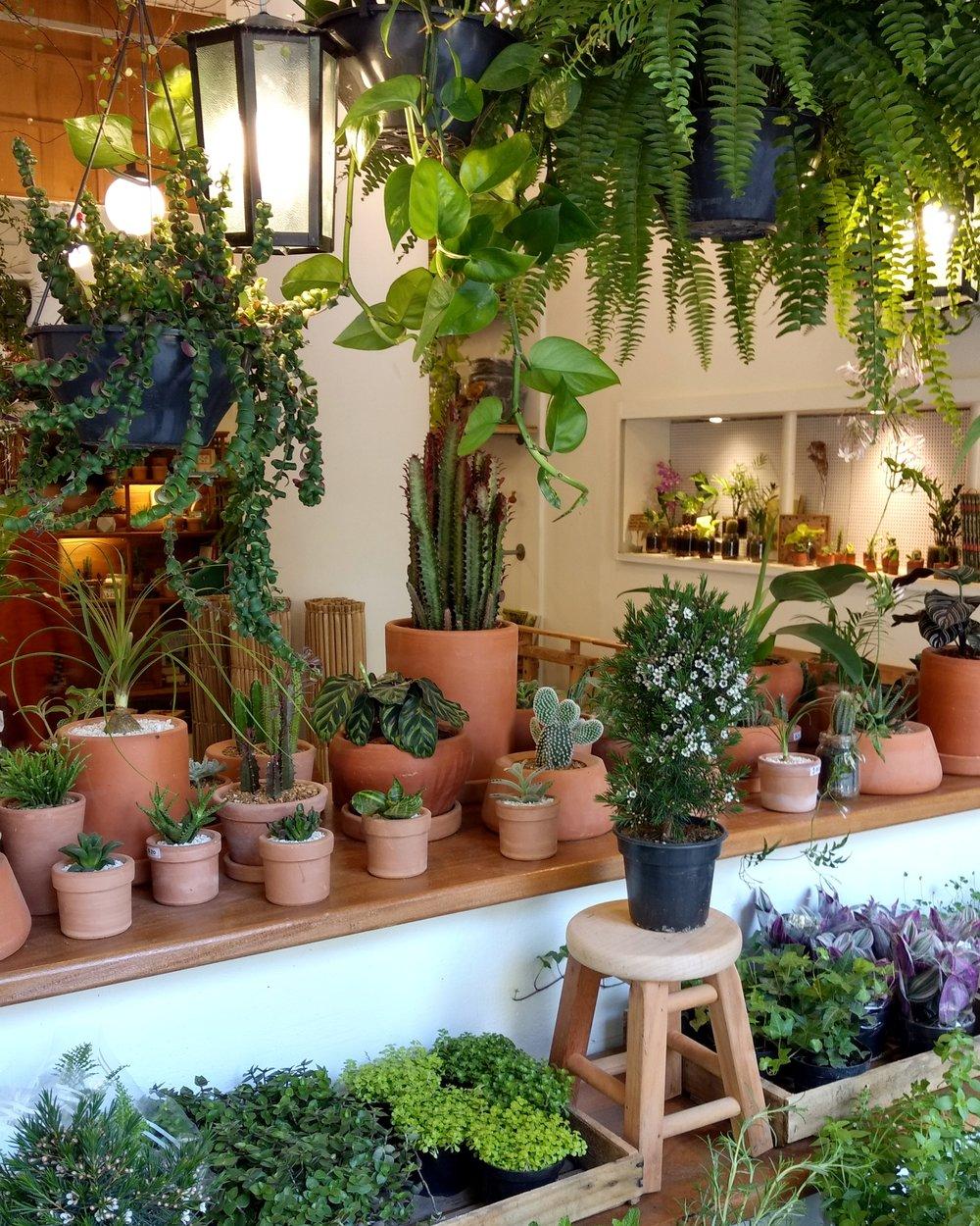 Jardin Cafeteria Sao Paulo