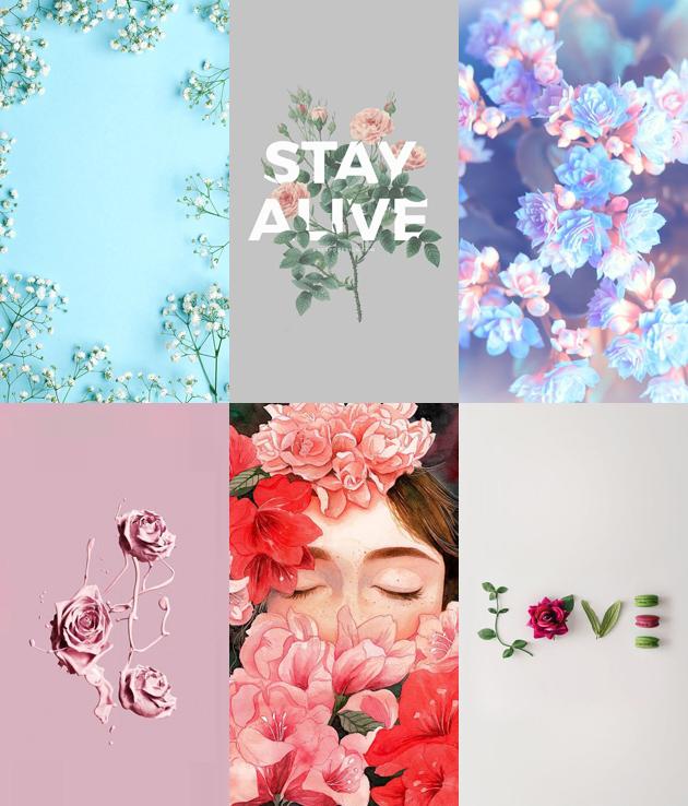 Wallpaper Para Celular Folhas Flores E Cactos Colorindo