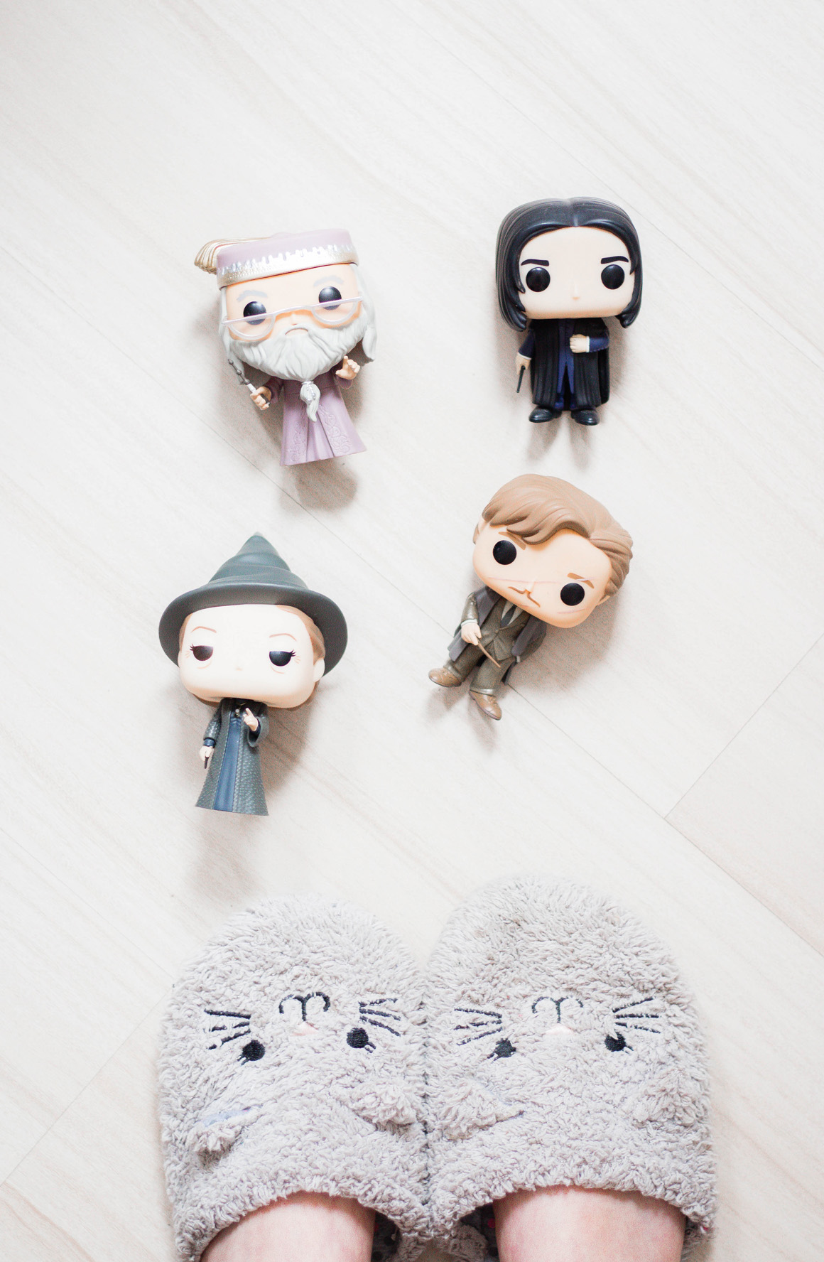 cotidiano Funkos Harry Potter