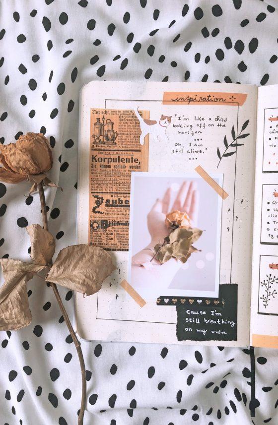 Bullet Journal pagina inspiradora com colagens