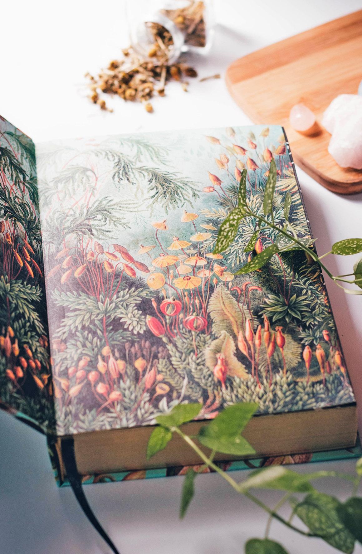 Resenha de livro O Mundo Invisível entre Nós
