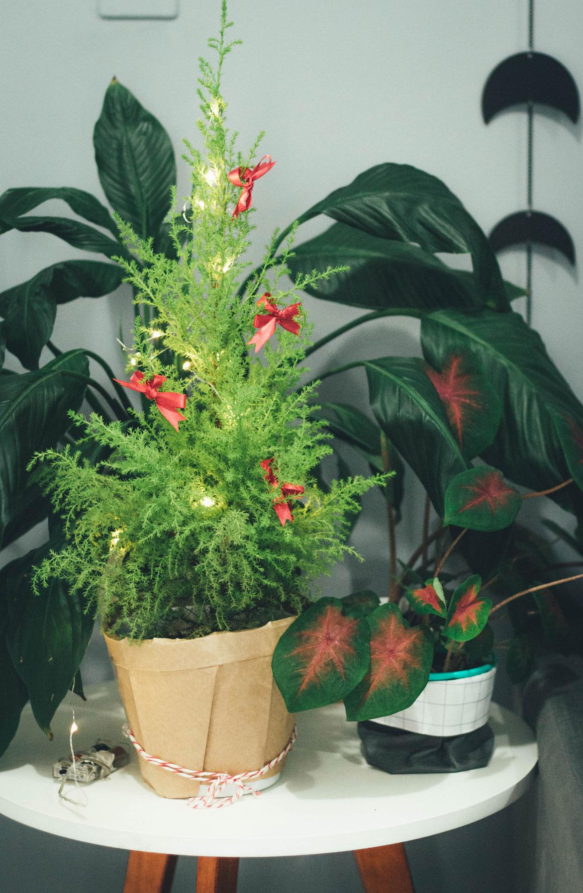 Arvore de natal pequena decoração de natal