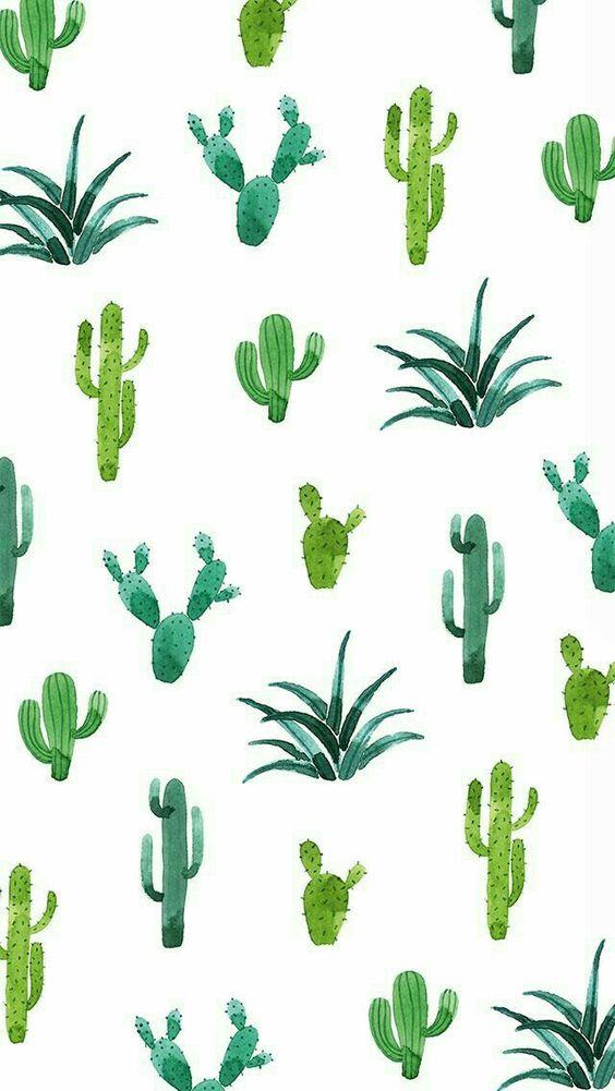 Wallpaper Para Celular Folhas Flores E Cactos Colorindo Nuvens