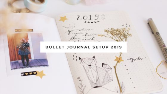 Video bullet journal 2019 set up