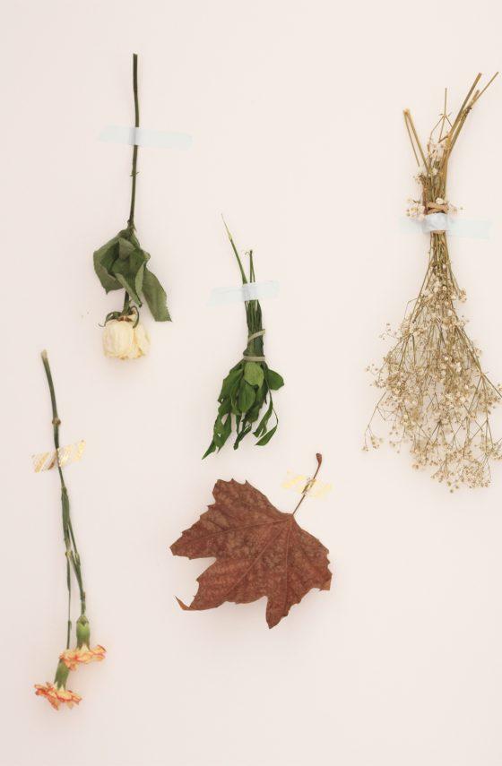 Parede de folhas secas